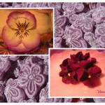 Mousse de caramelos violeta